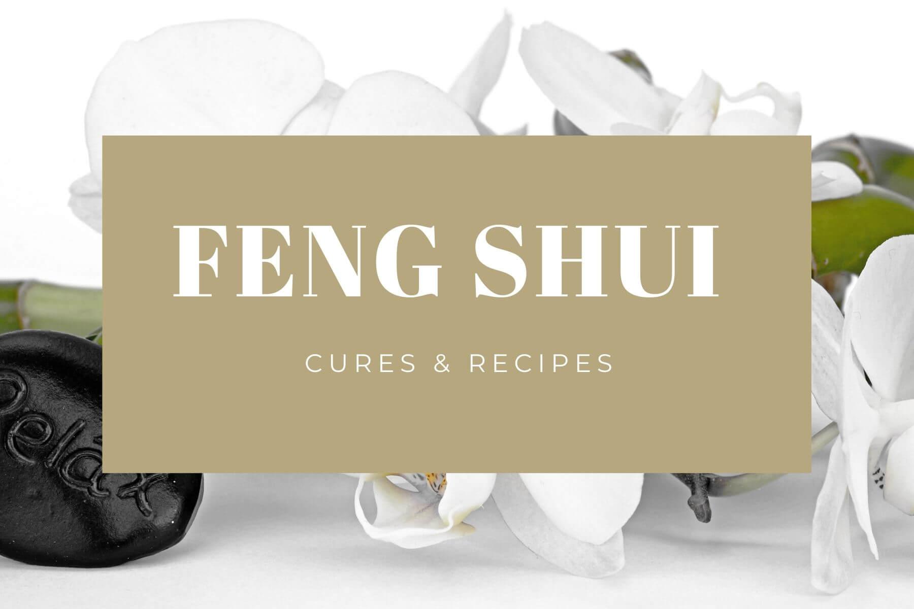 FEng Shui CircleofWealth orchids