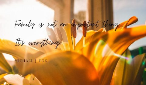 Yellow Flowers Inspirational Instagram Quotes Gallery