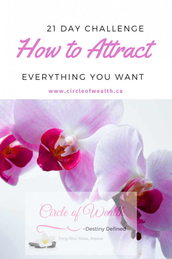 21 Day Challenge How to Attract