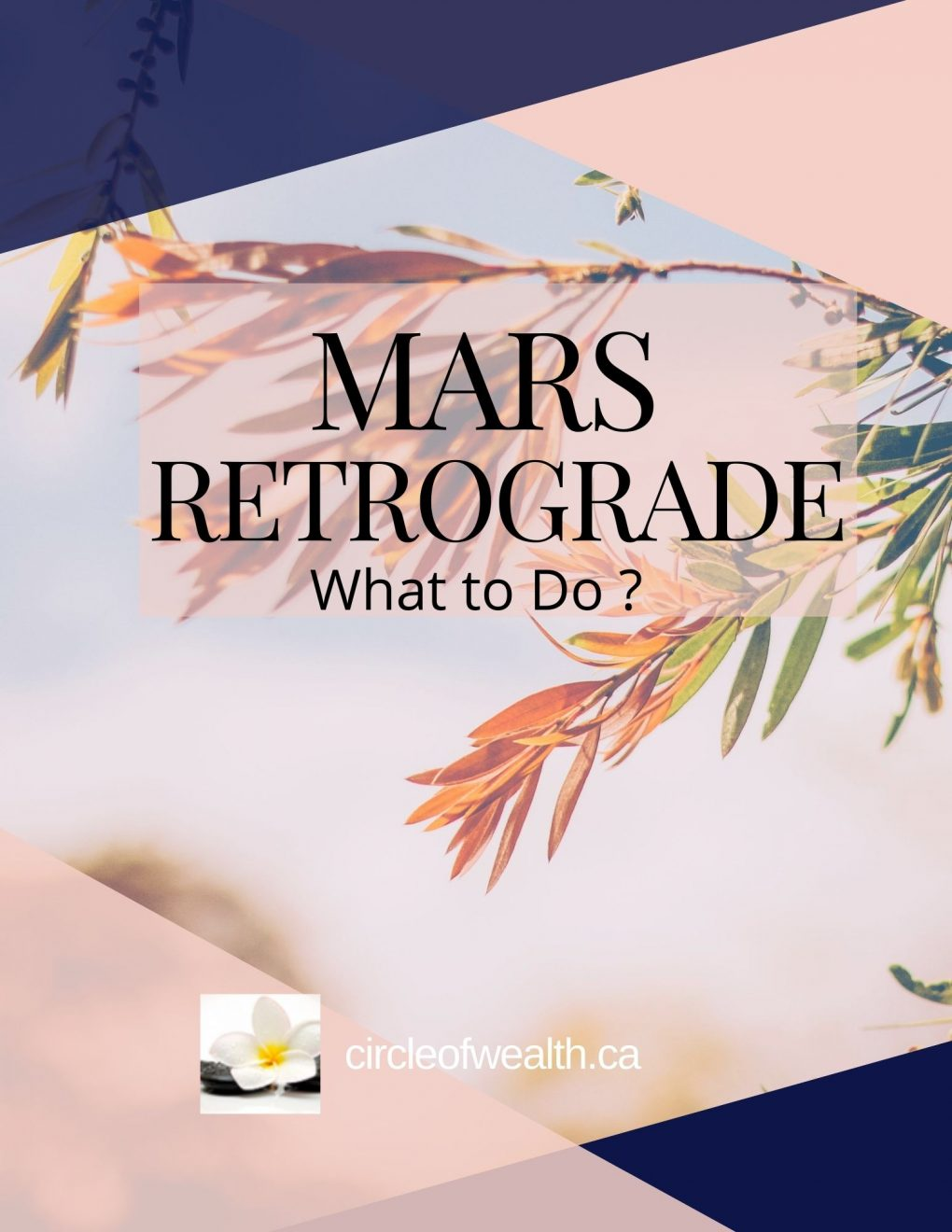 Mars In Retrograde What to do