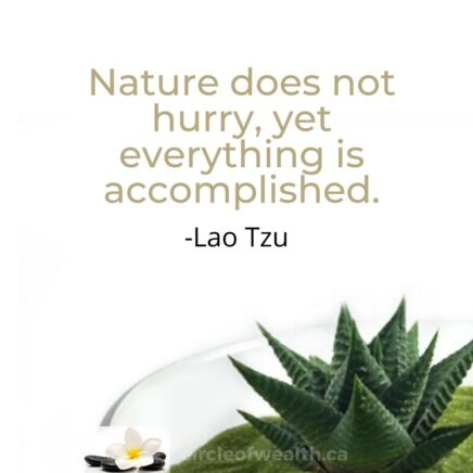 LAO TZU Quotes Collection
