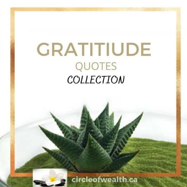 Gratitude Quotes Collection