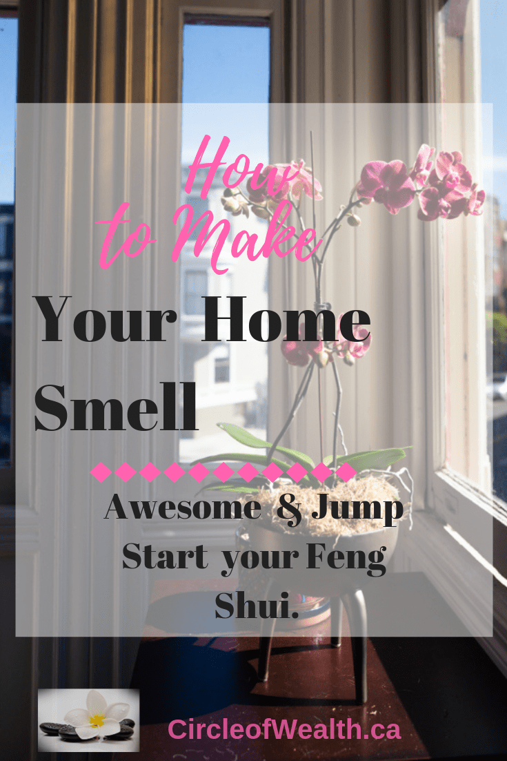 I love good essential oils but there are many other Natural ways to make my home Smell Awesome!