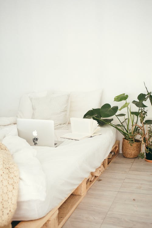 Remove Plants from Your Bedroom